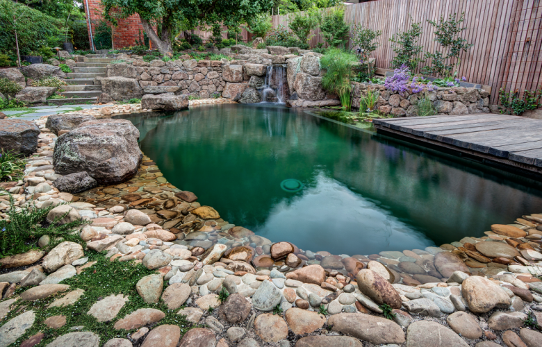 Why Choose A Natural Swimming Pool The Real Estate Conversation