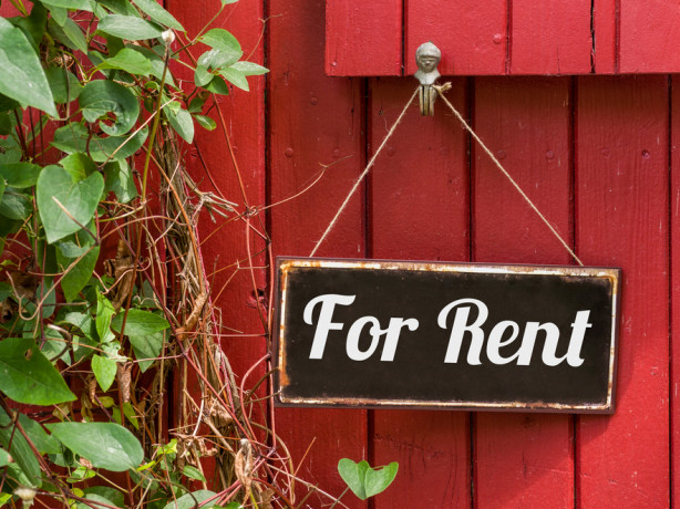 Seven key policy options to reinvigorate the rental market